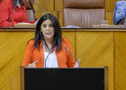 """El PSOE exige a la Junta que """"se alegre por la llegada de la vacuna, deje de confrontar con el Gobierno y refuerce el sistema sanitario público""""."""