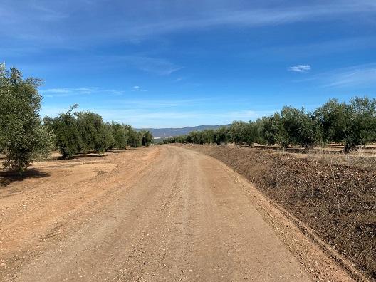 El Ayuntamiento de Marmolejo invierte 200.000€ de fondos propios en el arreglo de caminos rurales.