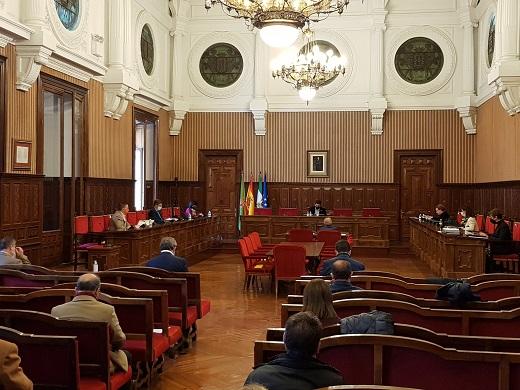 El pleno de la Diputación aprueba una declaración institucional contra el cierre de El Corte Inglés en Linares.