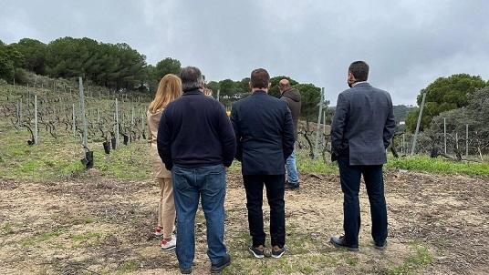 El diputado de Agricultura, Pedro Bruno, visita las Bodegas Viñas Tintas Capellanía de Andújar.