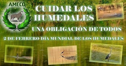 La Asociación Medioambiental Ameco participa en un proyecto para conservar los humedales andaluces.