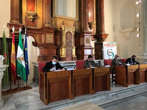 Reyes incide en la necesidad de aprovechar la oportunidad que Jaén va a tener con el Fondo de Recuperación europeo.