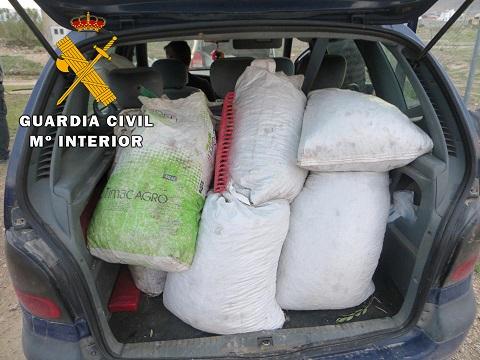 La Guardia Civil investiga a nueve personas como presuntas autoras de Hurto de Aceituna.