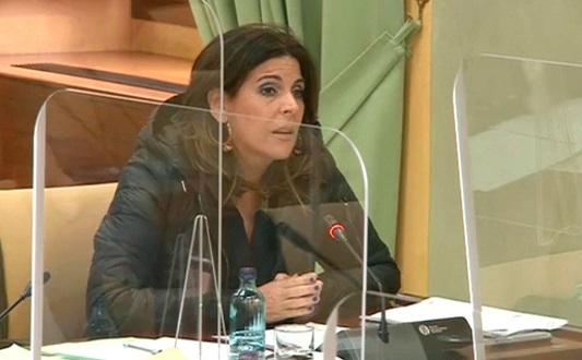 El PSOE saca adelante una PNL para que la Junta refuerce su implicación con la Fundación Estrategias de Jaén.