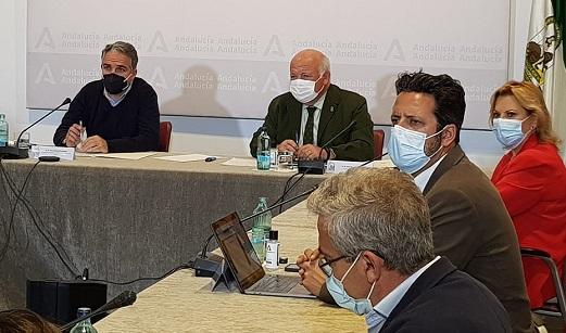 Andalucía mantiene las medidas contra la Covid-19 tras reunirse el Comité de Expertos.
