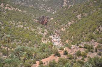 camping-aourir-morocco-outside-the-camping-34-2014