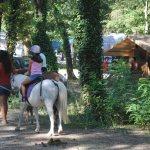 balade poney, camping, art de vivre