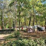 camping art de vivre, emplacements, camping car
