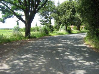 Schattige Wege und wenig Verkehr