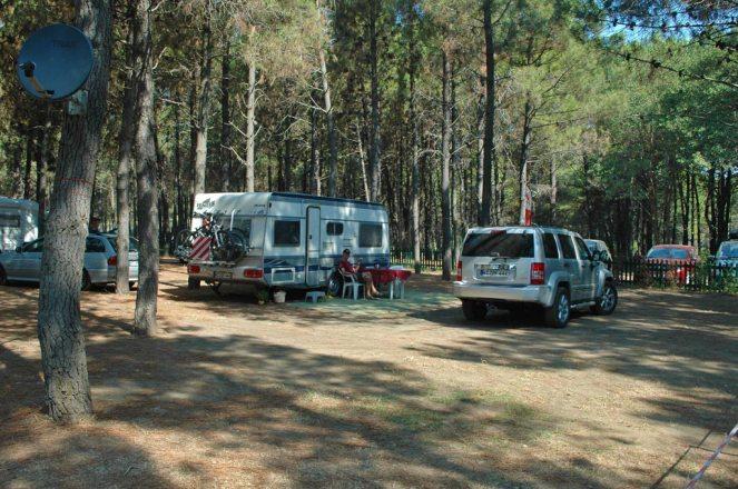 Camping Safari, ruhiger Stellplatz im Pinienwald