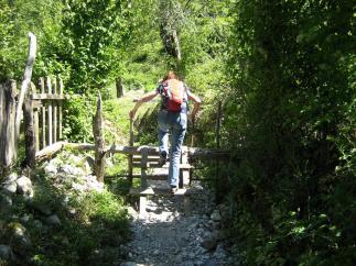 Wanderwege über Stock und Stein