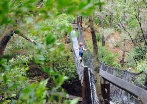 k felt brave on the swinging bridge