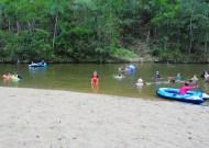 crowded waterhole