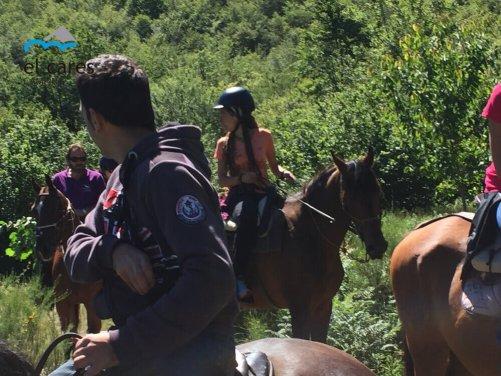 personas-haciendo-rutas-a-caballo-por-un-precioso-hayedo-en-el-parque-nacional-de-picos-de-europa