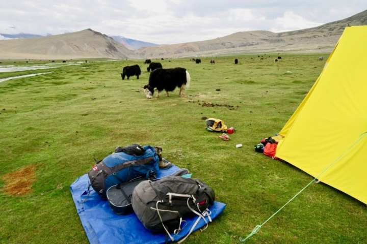 Ladakh 6