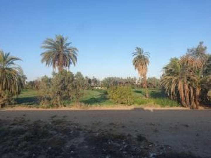 Cairo to Aswan 11