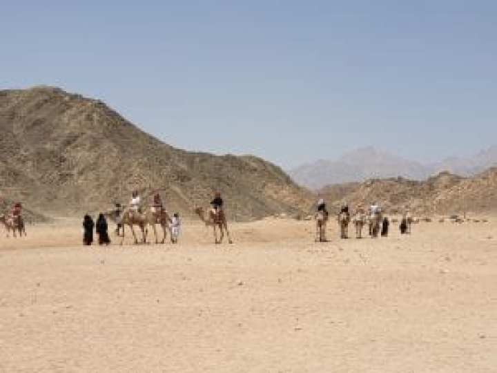 Sahara Egypt 34