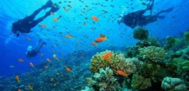 Andaman Islands 1