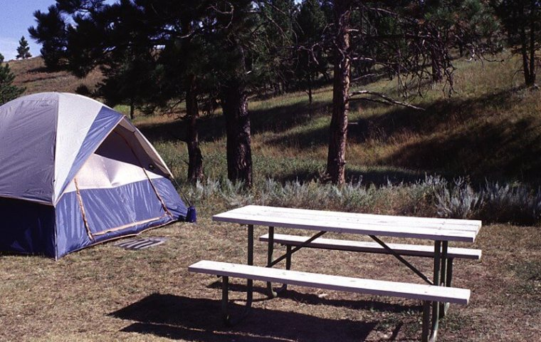 Image of free camping in florida