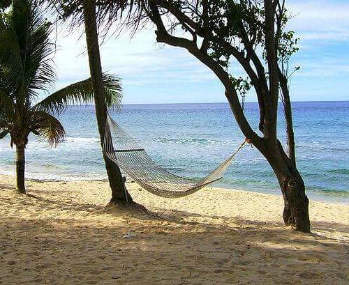 Image of pros and cons of hammock camping