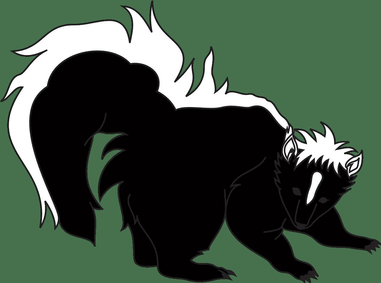 smelly skunk