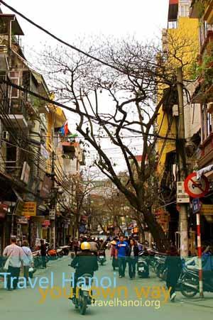 Travel Hanoi