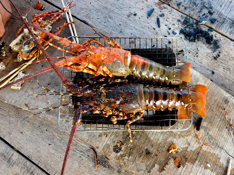 binh ba island lobster