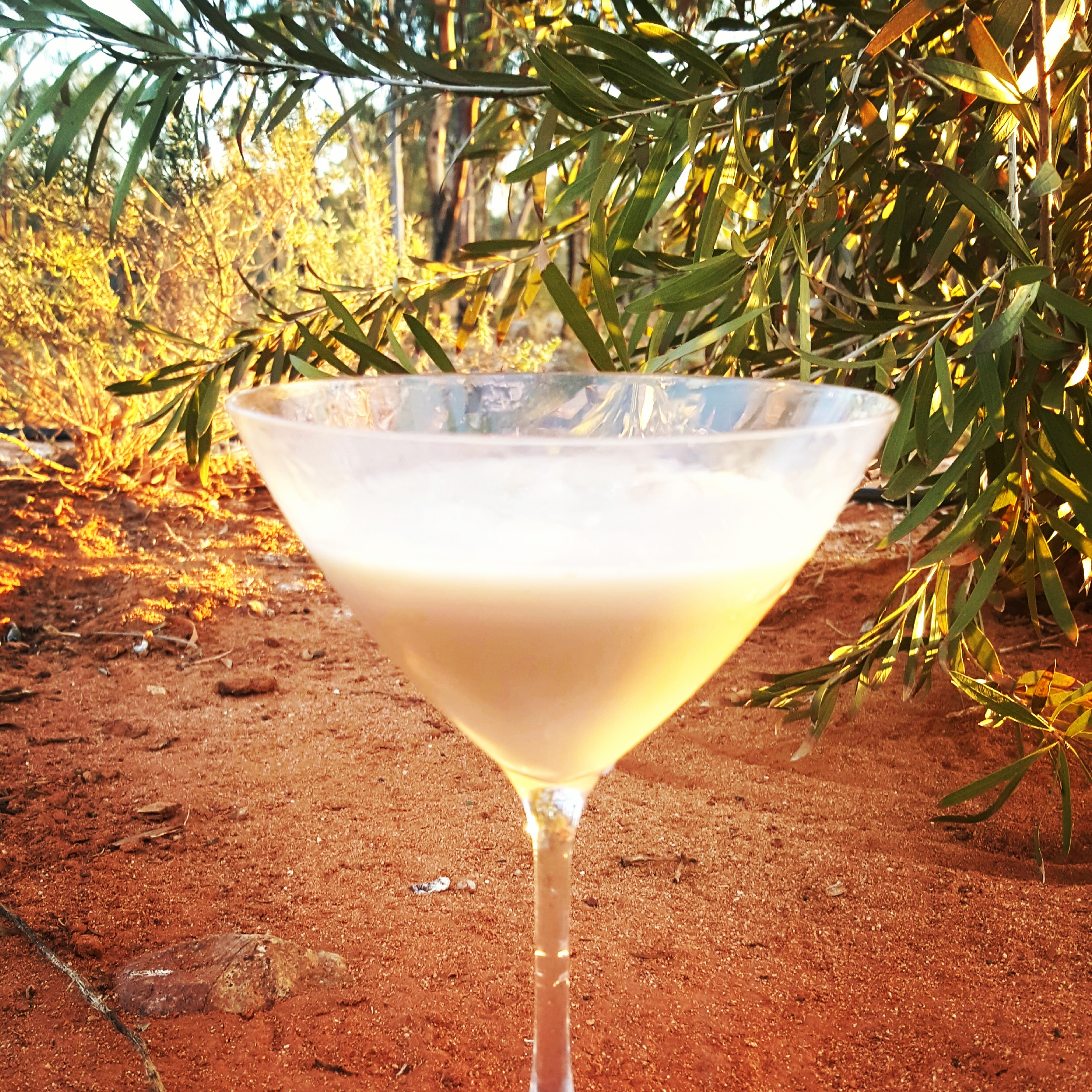 Baileys Chocolatini Cocktail chocolatini • camping with a cocktail