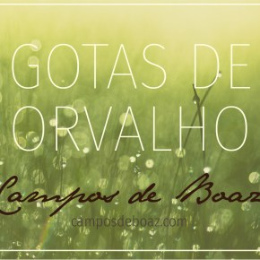 Gotas de Orvalho - Edward Bounds (168)
