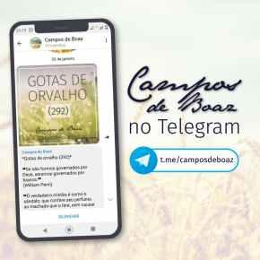 Campos de Boaz no Telegram