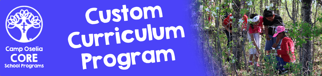 Custom Cirriculum Programs