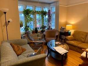 A living room with three chairs and plants hanging in the window