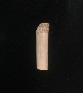 Pipe fragment from west circle privy