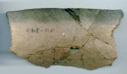 ate Woodland pot sherd with boiling residue from the Sand Point site
