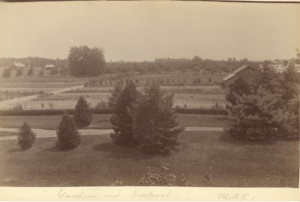 MAC Gardens and Orchard, date unknown. Image Source.
