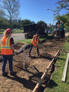 Survey during sidewalk construction
