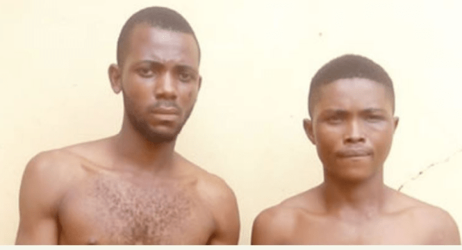 IMSU Student Arrested For Armed Robbery(photo)