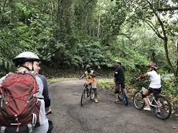 cycle tour of jamaica 8