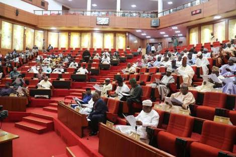 NIGERIA'S SENATE PASSES BILL ON HEALTH INSURANCE FOR ITS CITIZENS