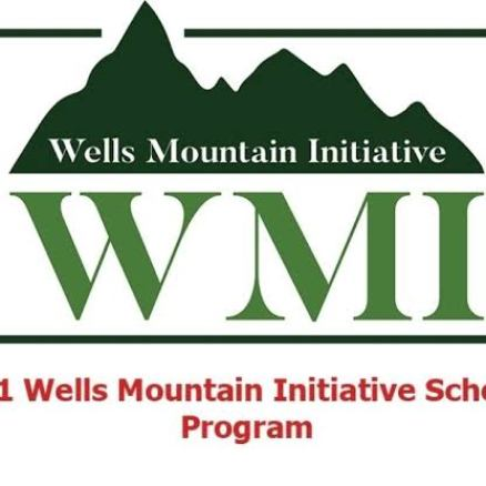 2021 Wells Mountain Initiative (WMI) Scholarship Program For Students From Developing Nations.