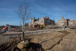 The first trees go in at the Tisch Park.
