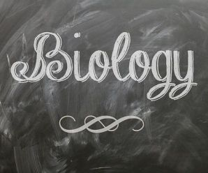 Full List Of Science Courses Without Biology