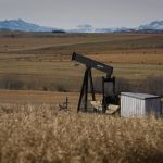 Group cleaning up abandoned oil wells says Alberta government rules are inadequate