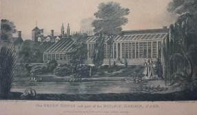 Pond in the Old Botanic Garden engraving by Harraden 1800