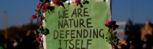 A board witht eh words WE ARE NATURE DEFENDING ITSELF with flowers round the edges