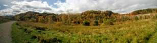 Fall colours at the Don Valley Brickworks