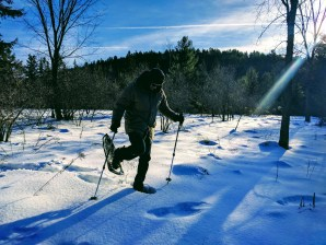 Snowshoeing - Wakefield