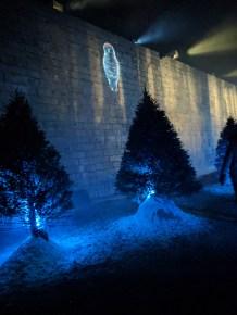 Lumina Borealis, Fort Henry