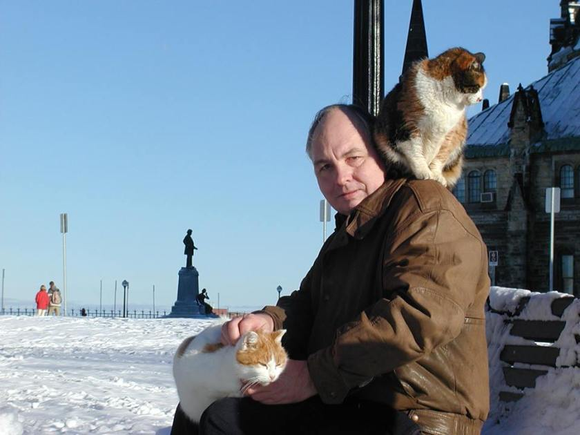 Cats of Parliament Hill