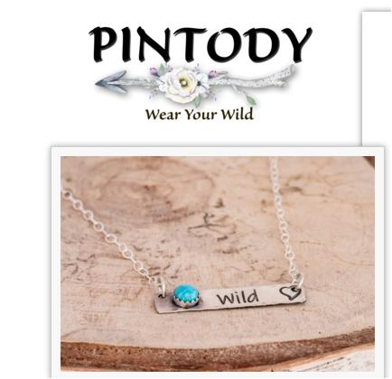 Pintody Wild Bar Necklace Giveaway